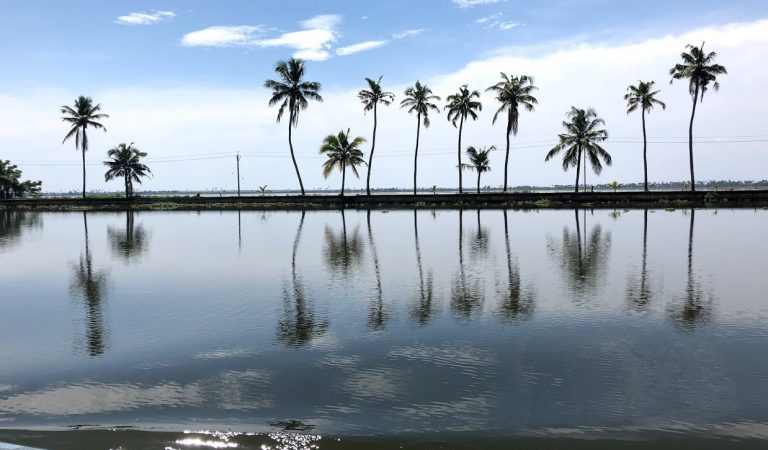 Alleppey Backwaters- Cheapest Fare
